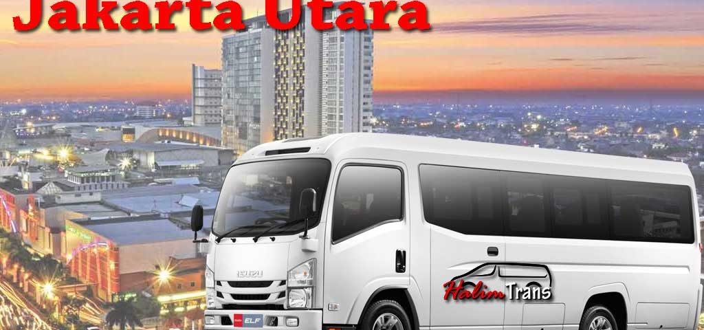 sewa elf Jakarta Utara halim trans