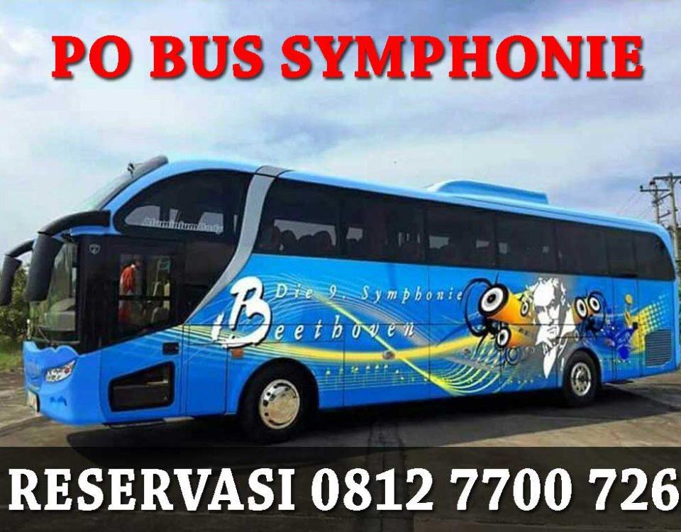 sewa bus pariwisata symphonie